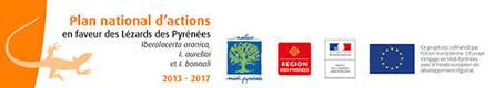 Plan Nacional de acciones para la conservación del Desmán de los Pirineos en Francia