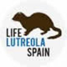 Life+ Lutreola Spain