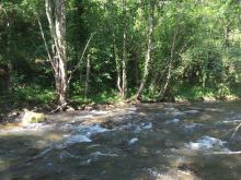 Río Selmo