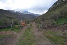 Construcción pista forestal al lado del río Carrión