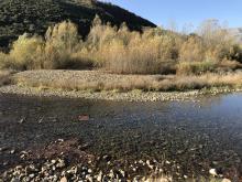 Estaquillado río Esla